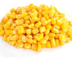 Зерно кукурузы